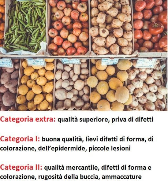 Categorie-frutta-verdura