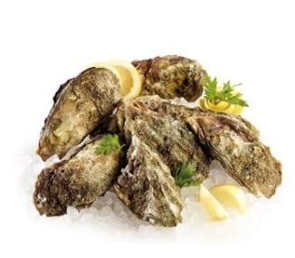 ostriche-biotossine