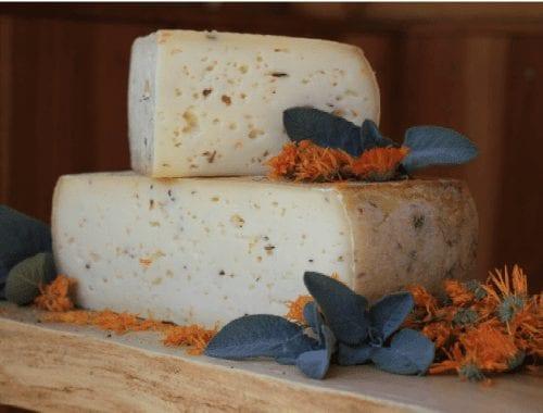formaggio_dolomiti_richiamo